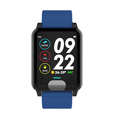 Amazon.com: certainPL E04 ECG+PPG Smart Watch Wristband Band ...