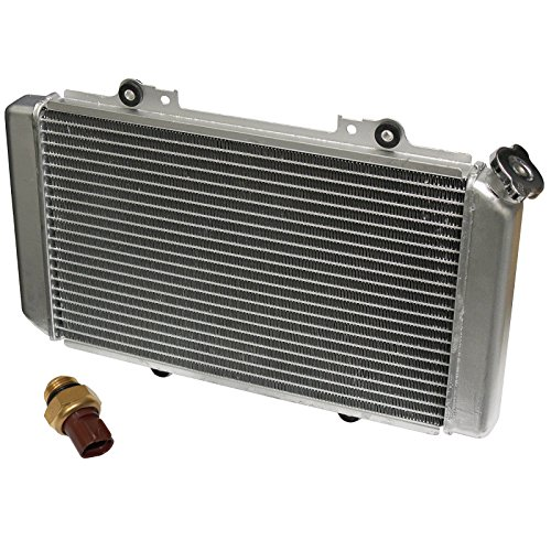 grizzly radiator - 1