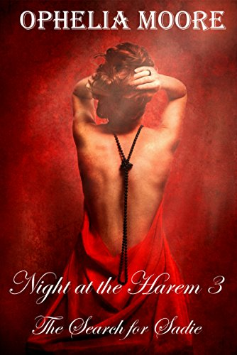 Night at the Harem 3: The Search for Sadie -