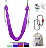 x pole starter kit - F.Life Aerial Yoga Hammock 5.5 yards Include Daisy Chain,Carabiner and Pose Guide (Purple)