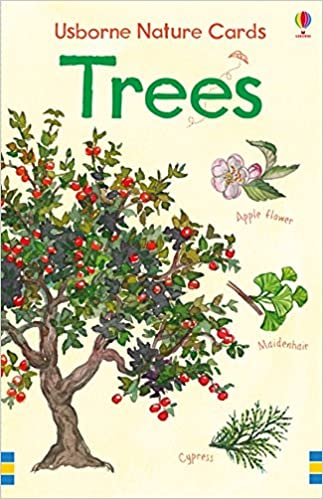 Trees Usborne Nature Cards First Spotters Cards Amazon