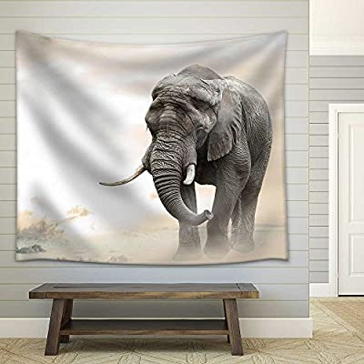 African Elephant Male Walking Alone in Desert at...