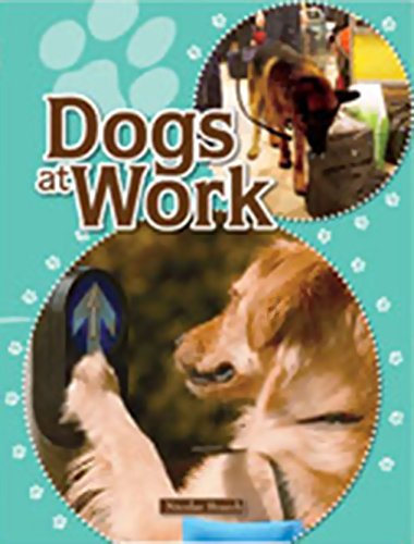 Rigby Focus Forward: Individual Student Edition Dogs at Work by RIGBY