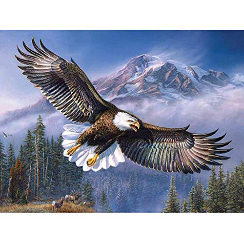 MXJSUA 5D Diamond Painting Full Round Drill Kits for Adults Pasted Embroidery Cross Stitch Arts Craft for Home Wall Decor Soaring Eagle 12x16in (Soaring Eagle Embroidery)
