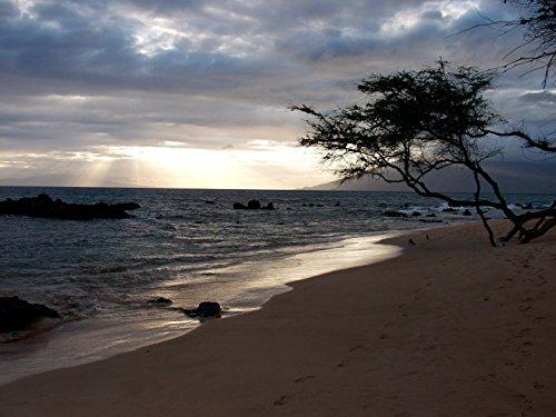 Hawaii Photograph - 4