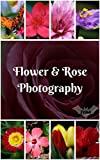 Flower & Rose Photography Photo Book: Blossom Photo, Bloom Photo, Floral Photo, Tree Photo, Flower Photo, Nature Photo, Garden Photo, Rose Photo