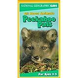 National Geo.Kids:Peekaboo Pal