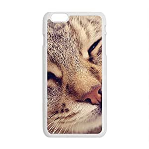 Cute Cats White Phone Case for Iphone6 plus