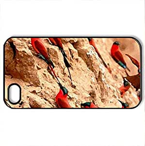 Birds of a Feather - Case Cover for iPhone 4 and 4s (Birds Series, Watercolor style, Black)