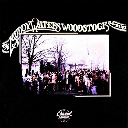 Muddy Waters Slide Guitar - 7