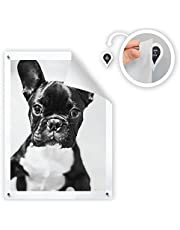 GoodHangups Damage Free Magnetic Poster and Picture Hangers Reusable Works on Any Wall As Seen On Shark Tank