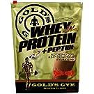 ゴールドジム ホエイプロテイン ダブルチョコレート風味 900g