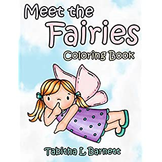 Meet the Fairies: A cute and simple coloring book for all ages