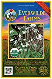 Everwilde Farms - 500 organic Garlic Chives Herb Seeds - Gold Vault Packet