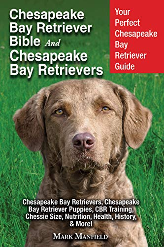 - Chesapeake Bay Retriever Bible and Chesapeake Bay Retrievers: Your Perfect Chesapeake Bay Retriever Guide Chesapeake Bay Retrievers, Chesapeake Bay Retriever Puppies, CBR Training, Chessie Size, More