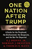 Book cover from One Nation After Trump: A Guide for the Perplexed, the Disillusioned, the Desperate, and the Not-Yet Deportedby E.J. Dionne Jr.