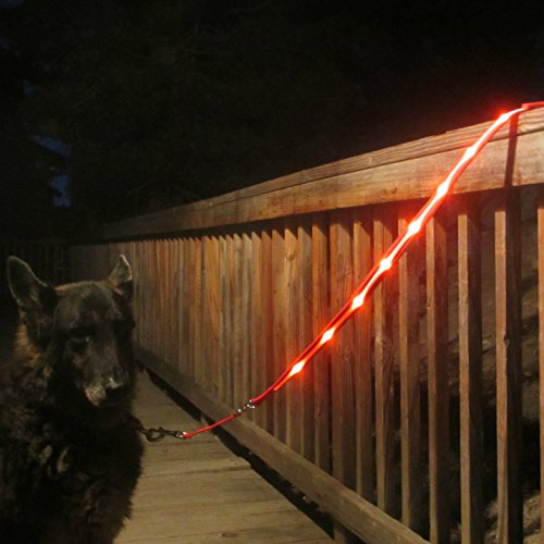 Image of Blazin' Safety LED Dog Leash - USB Rechargeable Flashing Light, 4 Ft, Water Resistant – Lightweight (S, Red)