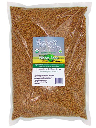 (Certified Organic Hard Red Winter Wheat Seed Berries 5 pound bag Excellent for Bread Can be used for seed)