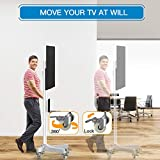 Mobile TV Cart with Wheels for 23-55 Inch LCD LED