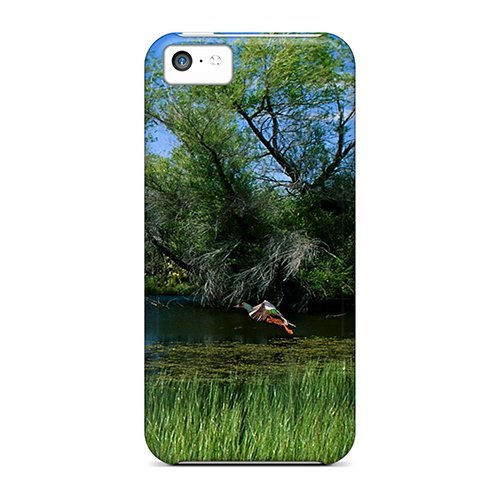 For Iphone 5c Fashion Design Mallards Pond - Paul Frank Designer