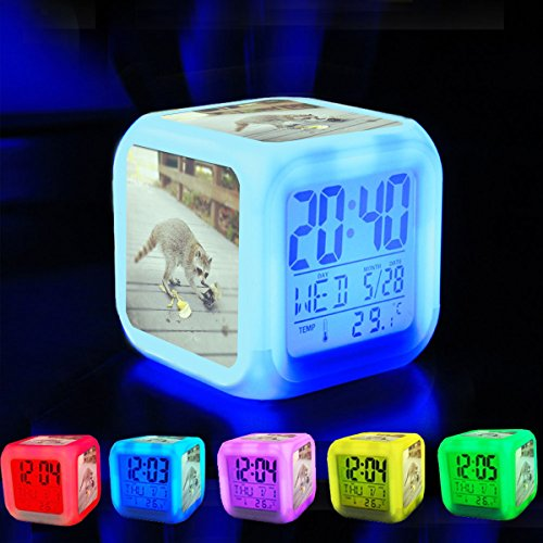 Alarm Clock 7 LED Color Changing Wake Up Bedroom with Data and Temperature Display (Changable Color) Customize the pattern-115.Caught a raccoon scavenging near the beach (Cocoa Beach, F… (Cocoa Full Sleeper)