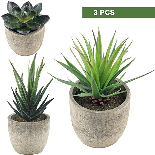 Decorative Boxwood Topiaries Artificial Succulent Plants Aloe Cactus with Gray Pots Faux Succulent Plants Fake succulents Artificial Topiary Cactus Plant Potted (3 Potted Plants)