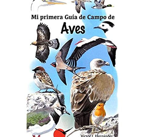 Mi primer guia de campo de aves: Amazon.es: Victor J. Hernandez: Libros
