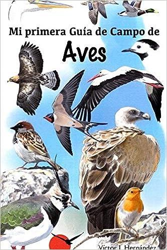 Mi primer guia de campo de aves: Amazon.es: Victor J. Hernandez ...