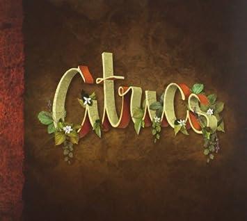 Citrics: Citrics: Amazon.es: Música