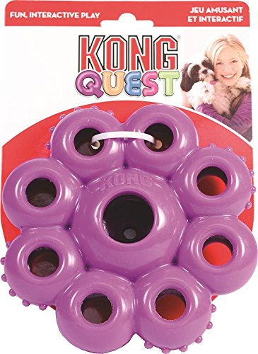 KONG Quest Star Pods Dog Toy, Large 1