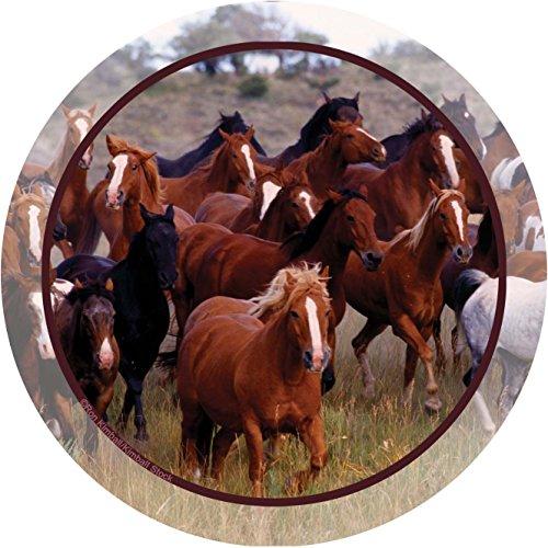 Thirstystone Stoneware Coaster Set, Horse Collage