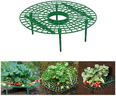 Urisgo Erdbeerstützen, Strawberry Plant Support, Unterstützung für den Erdbeeranbau,Plant Climbing Vine Stand,hält die Erdbeerreinigung aufrecht