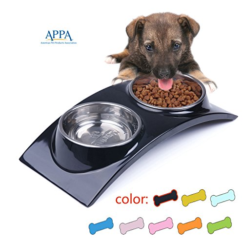 Melamine Cat Bowl (SuperDesign Rainbow Collection, Raised Stainless Steel Double Bowl Set in a Melamine, Non Skid Rubber Bottom, for Dog or Cat, Small, Black by Super Design)