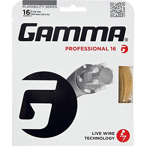 Gamma Live Wire 16 String - 4