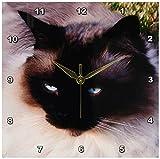 3dRose LLC dpp_1220_1 Siamese Cat 10 by 10-Inch Wall Clock Review