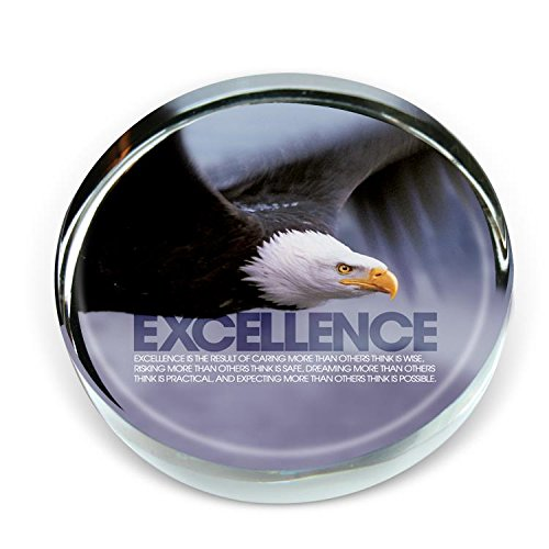 Successories 721877 Excellence Eagle Positive Outlook Paperweight