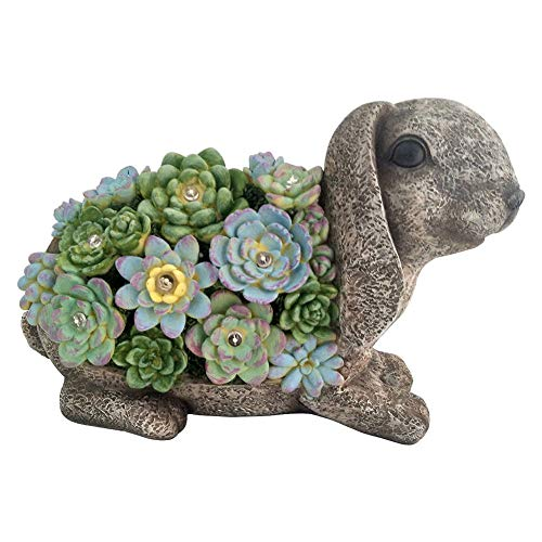 Evergreen Solar Resin Succulent Rabbit Garden Statue, 4.5x12x8H Battery Included
