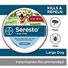 Bayer Seresto Flea and Tick Collar for Large Dog- from 7 weeks onwards or over 18 lb, 8 Month Protection