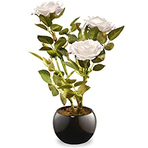 National Tree 9.5 Inch White Rose Flowers with Black Round Ceramic Base (NF36-5157P-1) 12