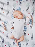 aden + anais Classic Swaddle Baby