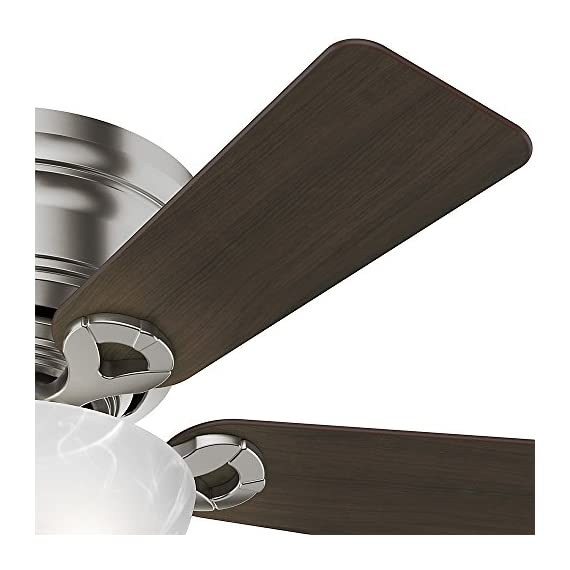Hunter Fan Company Haskell Ceiling Fan with Light 6 WhisperWind motor delivers ultra-powerful air movement with whisper-quiet performance so you get the cooling power you want without the noise you don't Reversible motor allows you to change the direction of your fan from downdraft mode during the summer to updraft mode during the winter 5 Eurasian Wood / Maple Reversible blades included