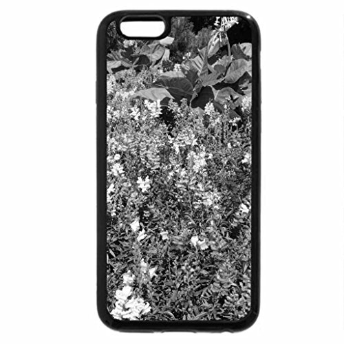 iPhone 6S Case, iPhone 6 Case (Black & White) - snapdragons Flowers on a picnic day at the park 16