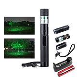 Preeyawadee Green Laser Pointer Pen Adjustable Burning Match Flashlight Torch 18650 Battery (Gold)