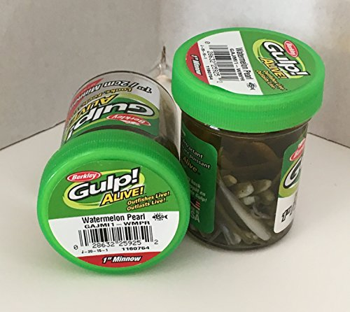 (GULP Bait 1 INCH WATERMELON PEARL MINNOW 2 jar bundle BERKLEY gulp Alive perch minnows ice fishing bait Panfish minnows)