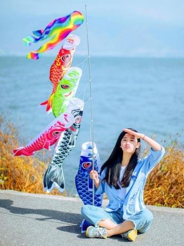 EatingBiting(R)? X5 Colors Japanese Carp Windsock Streamer Fish Flag Kite Koinobori Home Outdoors Hanging Decoration 20'' 50cm Length 5pcs Set, For Japanese Sushi Bar Izakaya Room