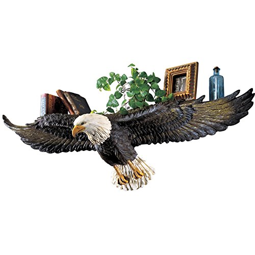 3D Sculpted Flying Bald Eagle Irk Shelf, Stygian