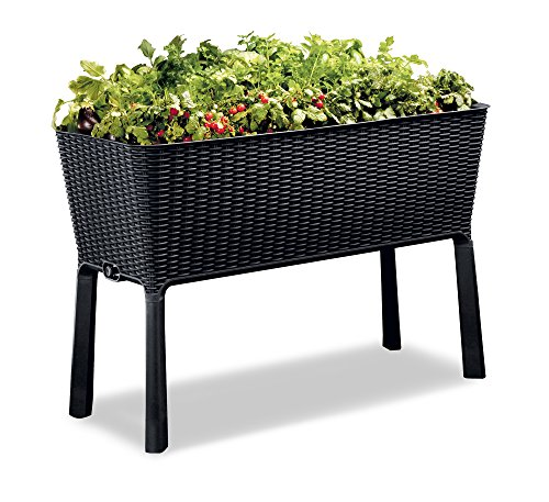 Keter Easy Grow 317 Gallon Raised Garden Bed with Self Watering Planter Box and Drainage Plug Anthracite