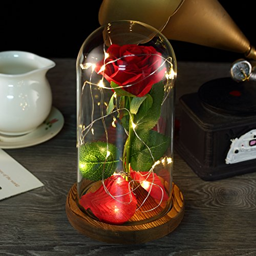 YSBER Beauty & the Beast Red Silk Rose and LED Light with Fallen Petals in Glass Dome on a Wooden Base (Yellow)