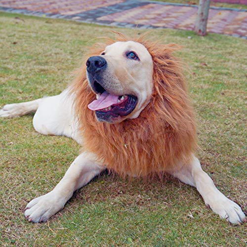 MagiqueW Lion Mane for Dog, Lion Mane Wig Costumes,Fancy Lion Hair for Holiday Dress up Cosplay Festival Party Gift, Suitable for Medium and Large Dogs-Brown (Eared&Tail) ()