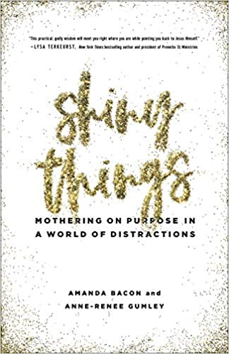 536df6661f063 Shiny Things: Mothering on Purpose in a World of Distractions ...